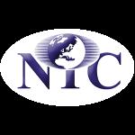 NIC Company